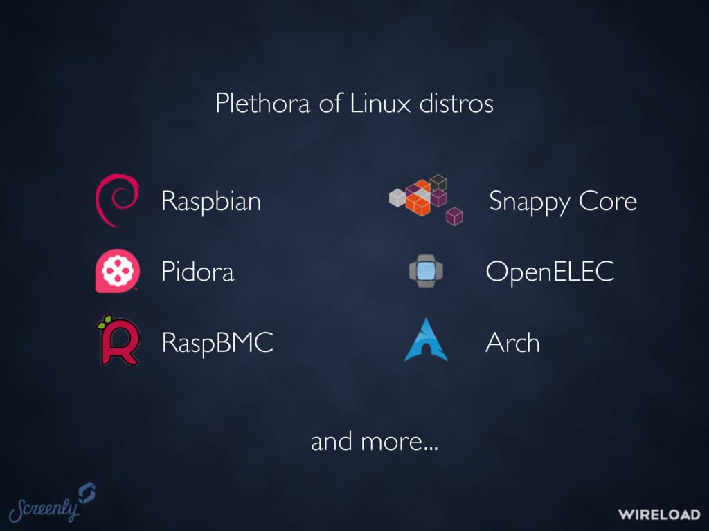 Plethora of Linux distros Raspbian Pidora RaspB...