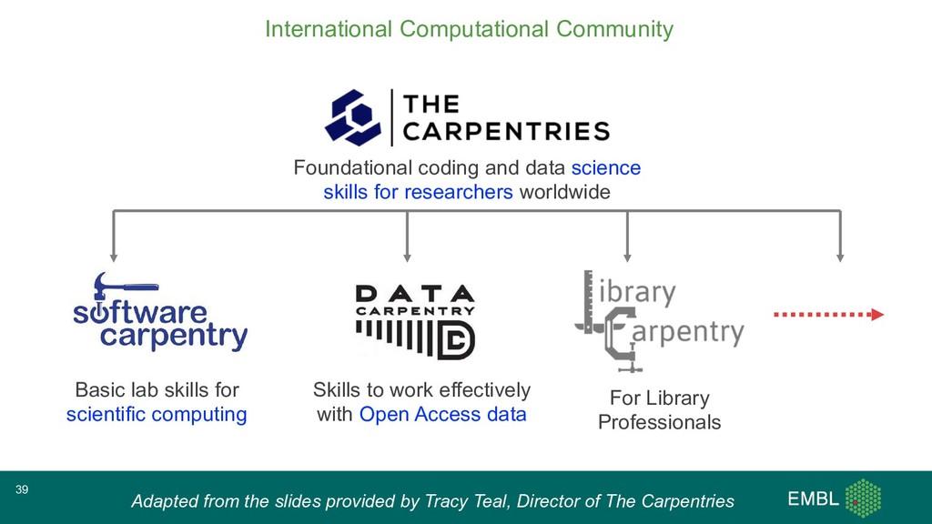 Basic lab skills for scientific computing Skill...