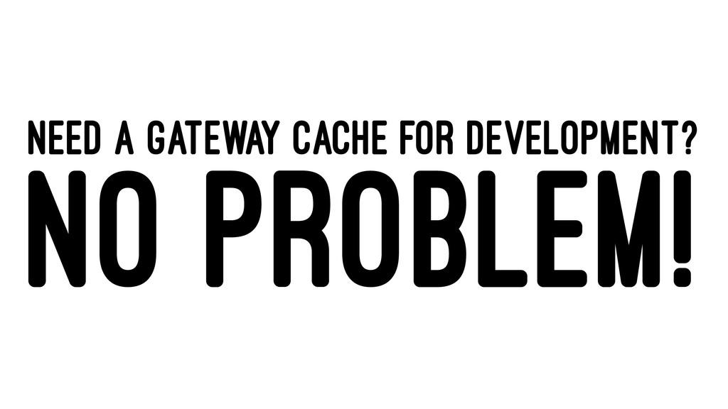 NEED A GATEWAY CACHE FOR DEVELOPMENT? NO PROBLE...