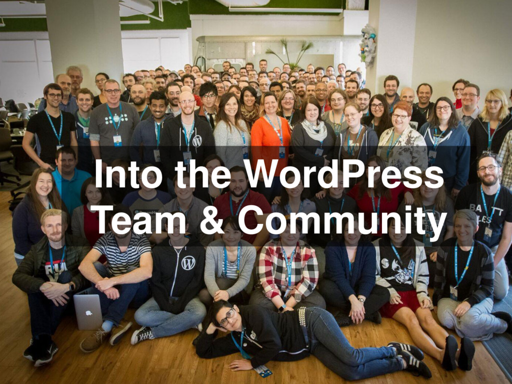 Into the WordPress Team & Community