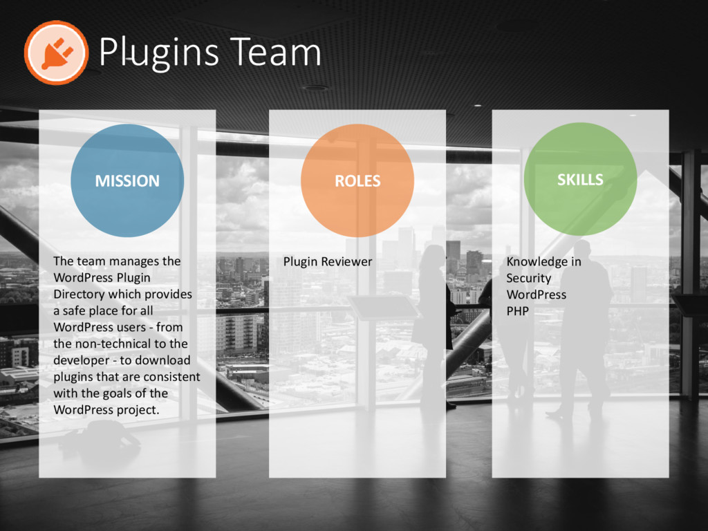 Plugins Team MISSION ROLES SKILLS Plugin Review...