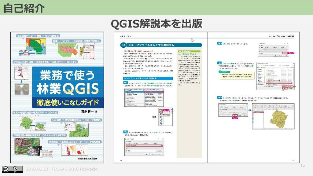 2018.06.23 FOSS4G 2018 Hokkaido QGIS解説本を出版 12 自...