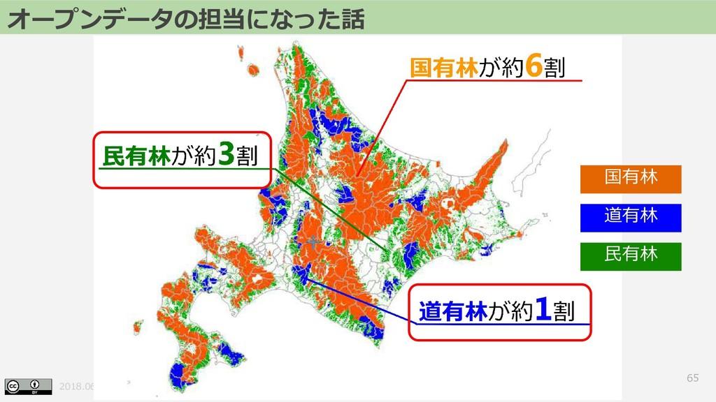 2018.06.23 FOSS4G 2018 Hokkaido 65 オープンデータの担当にな...