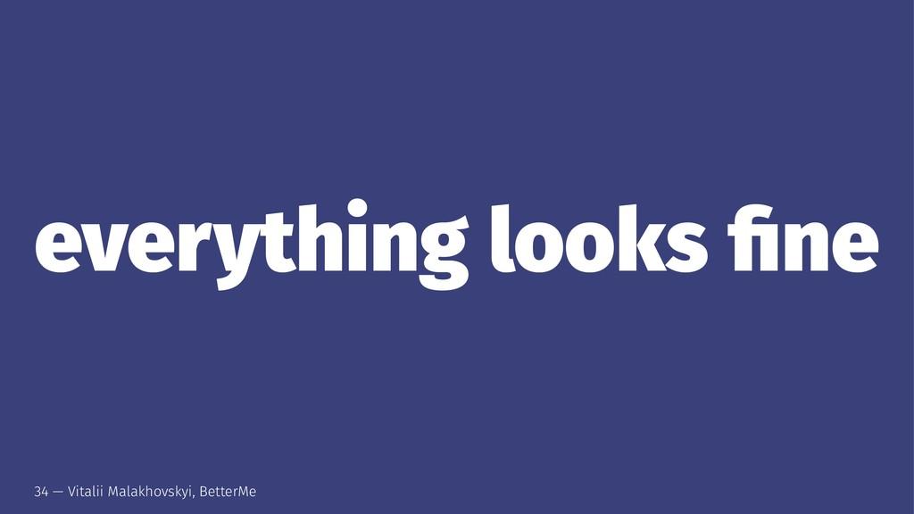everything looks fine 34 — Vitalii Malakhovskyi,...