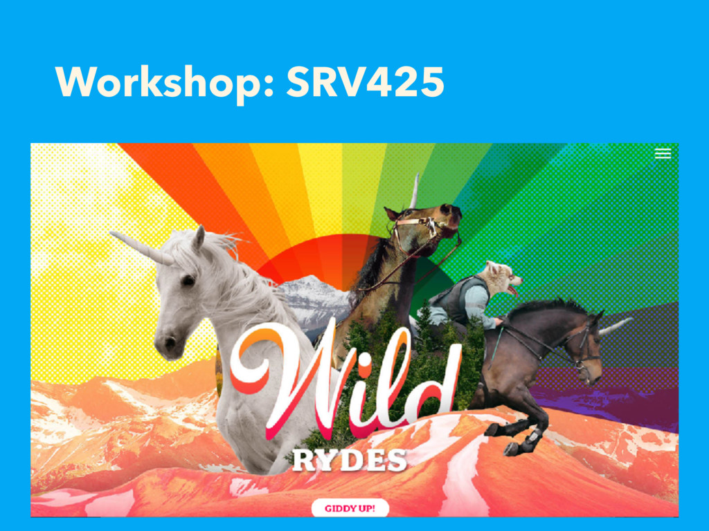 Workshop: SRV425