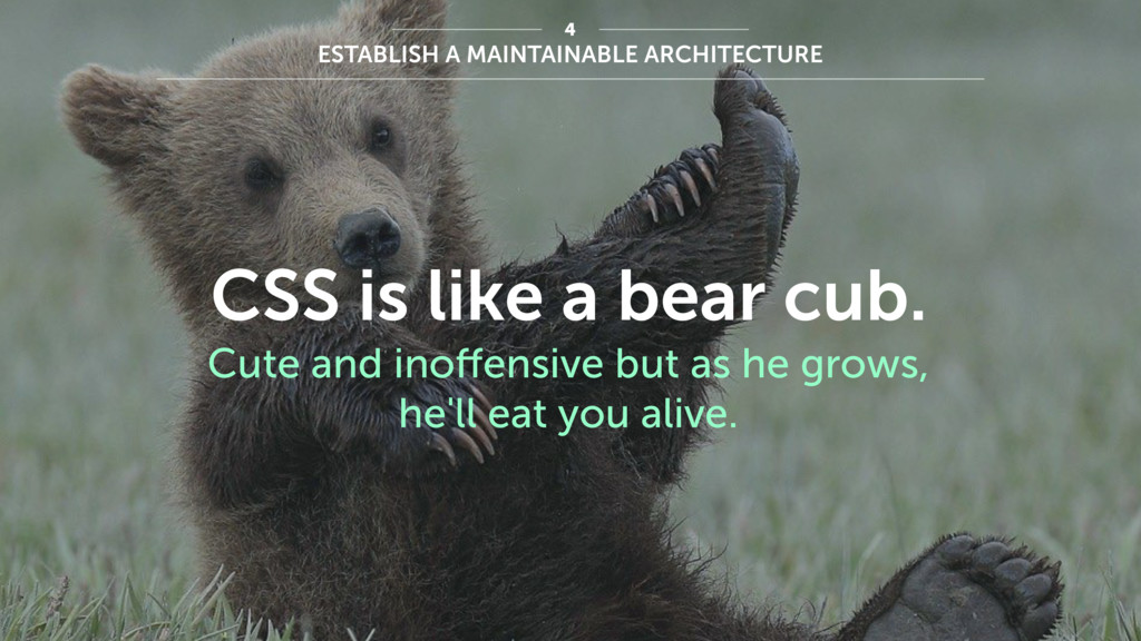 ESTABLISH A MAINTAINABLE ARCHITECTURE 4 CSS is ...