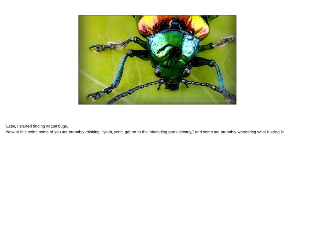 https://unsplash.com/search/bug?photo=emTCWiq2t...