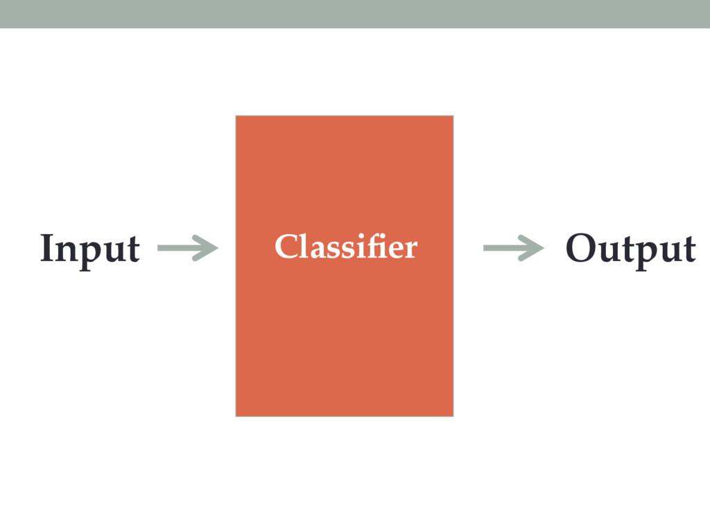 Classifier Input Output