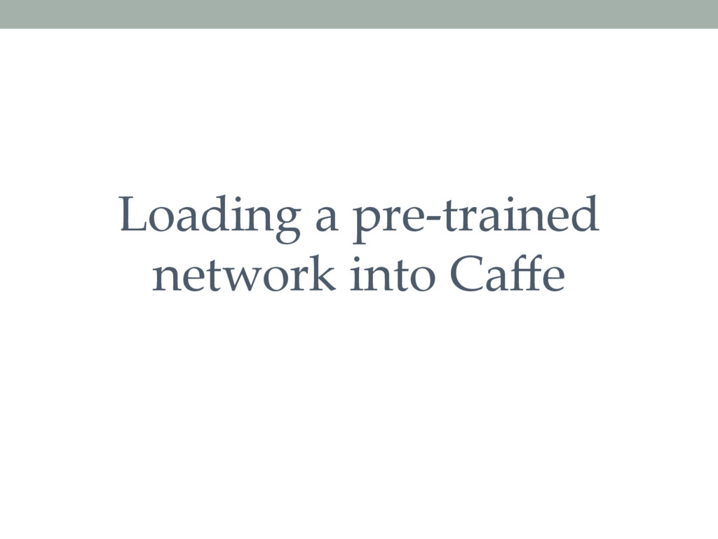 Loading a pre-trained network into Caffe