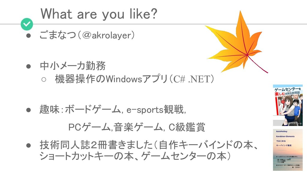 What are you like? ● ごまなつ(@akrolayer)  ● 中小メ...
