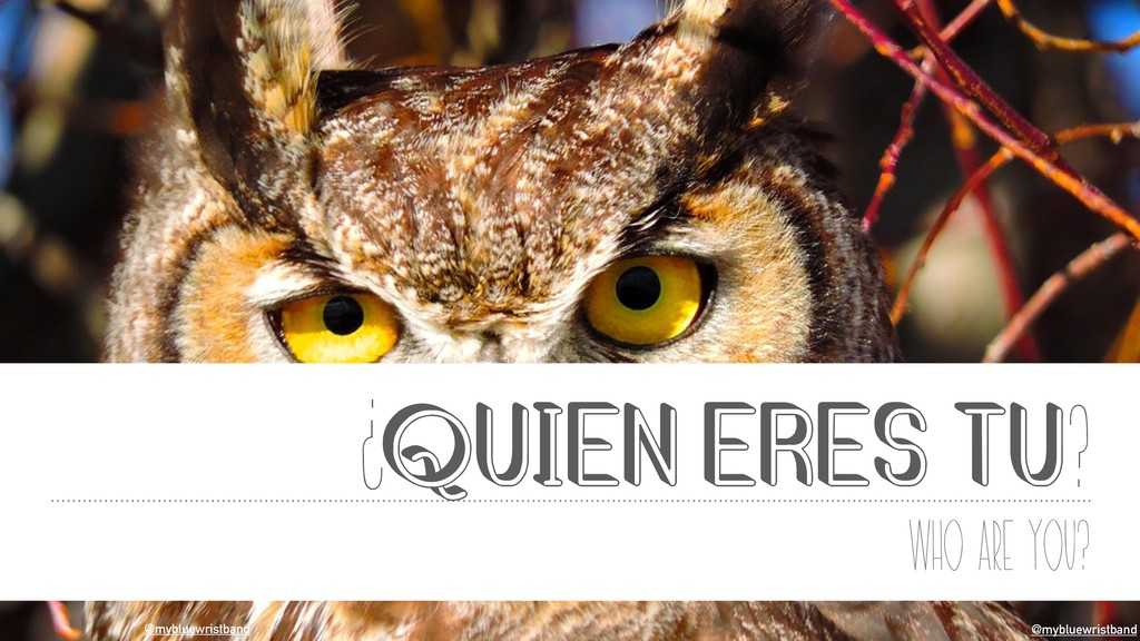 @mybluewristband QUIEN ERES TU? Who are you? ? ...