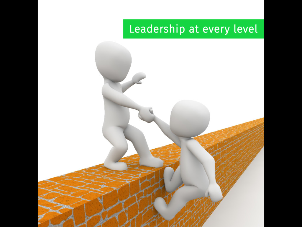 Leadership at every level