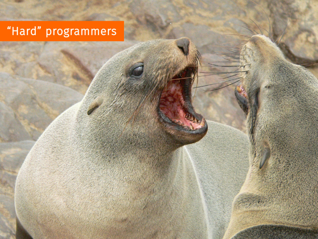 """Hard"" programmers"