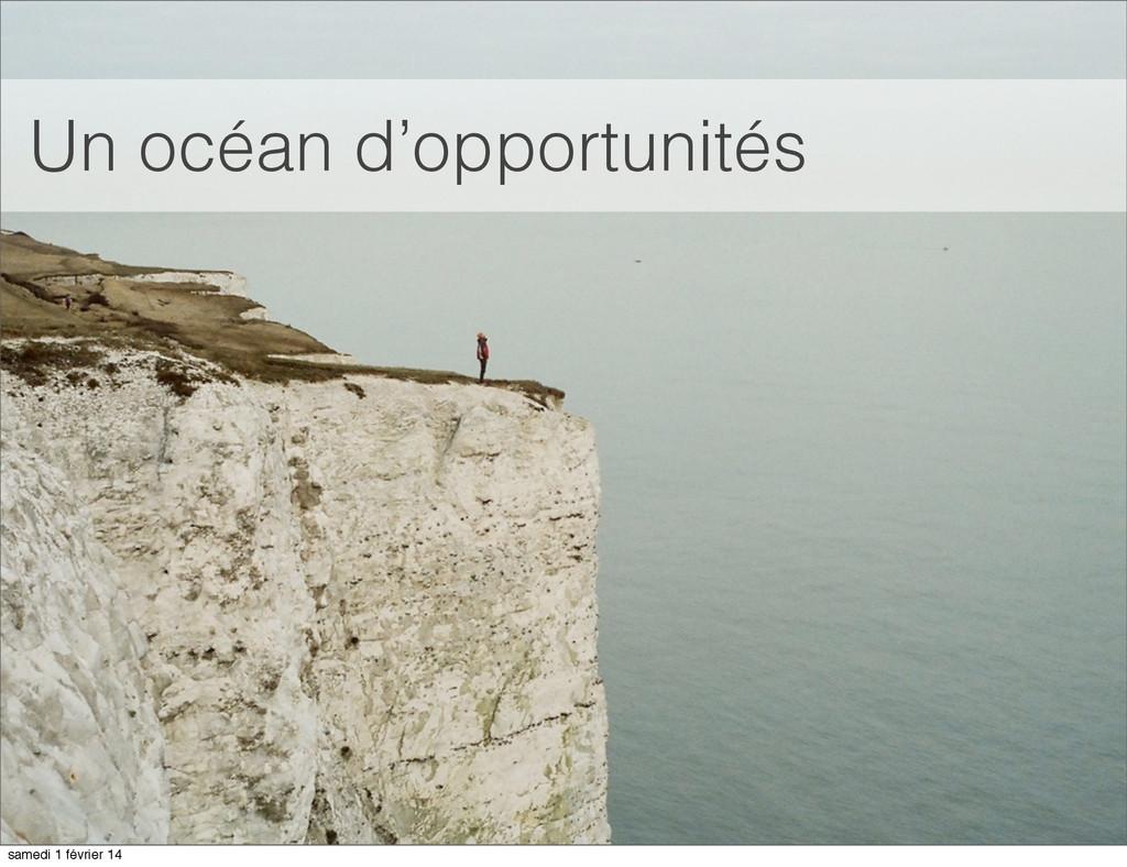 Un océan d'opportunités samedi 1 février 14
