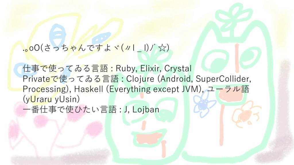 .。oO(さっちゃんですよヾ(〃l _ l)ノ゙☆) 仕事で使ってゐる⾔語 : Ruby, E...