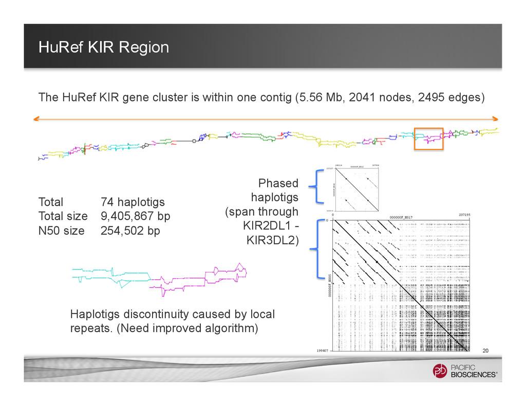 HuRef KIR Region 20 Total 74 haplotigs Total si...