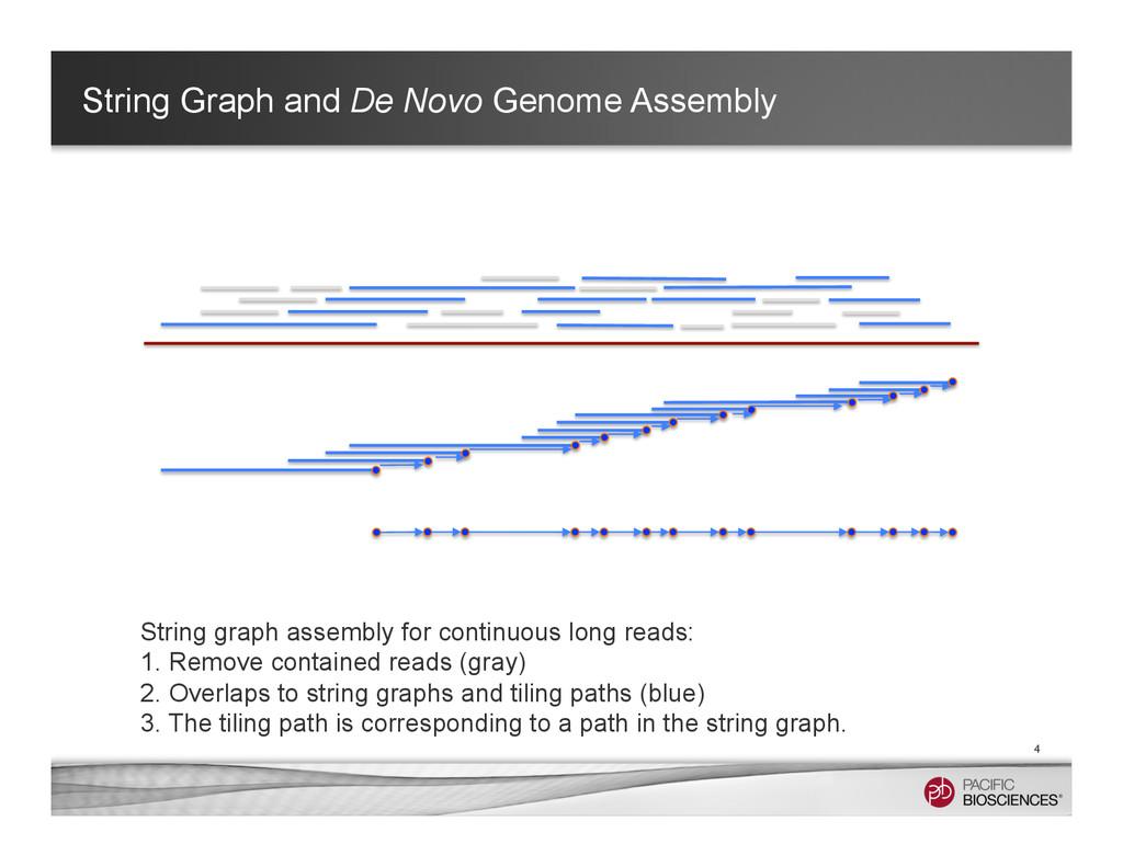 String Graph and De Novo Genome Assembly 4 Stri...