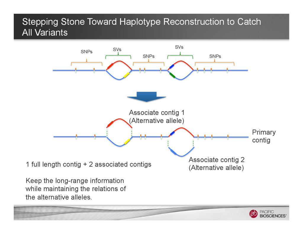 Stepping Stone Toward Haplotype Reconstruction ...