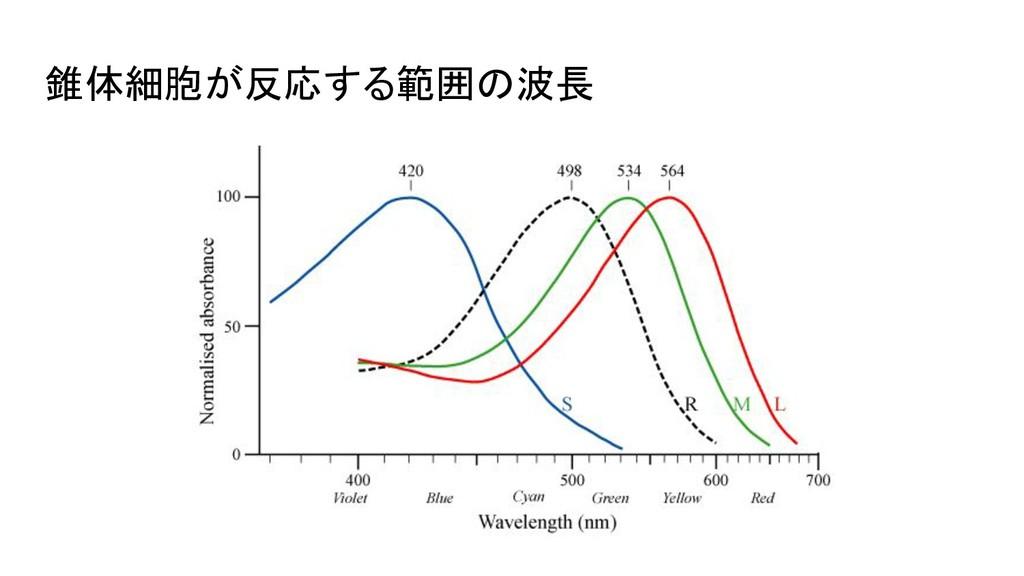 錐体細胞が反応する範囲の波長