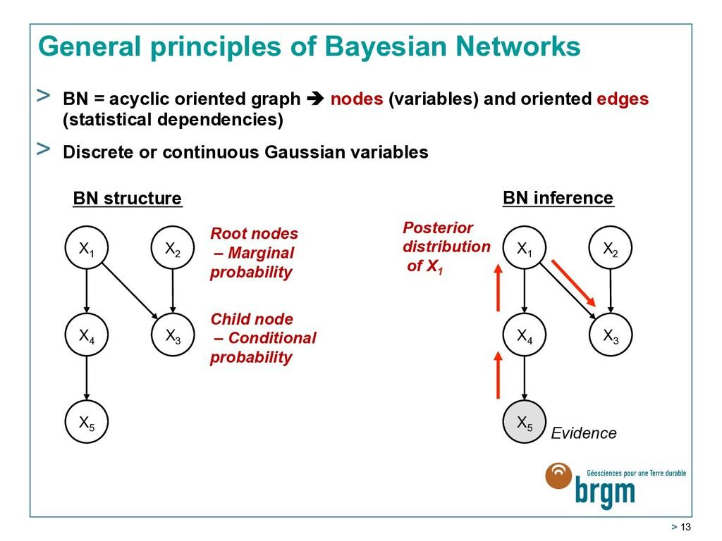 > 13 General principles of Bayesian Networks >...