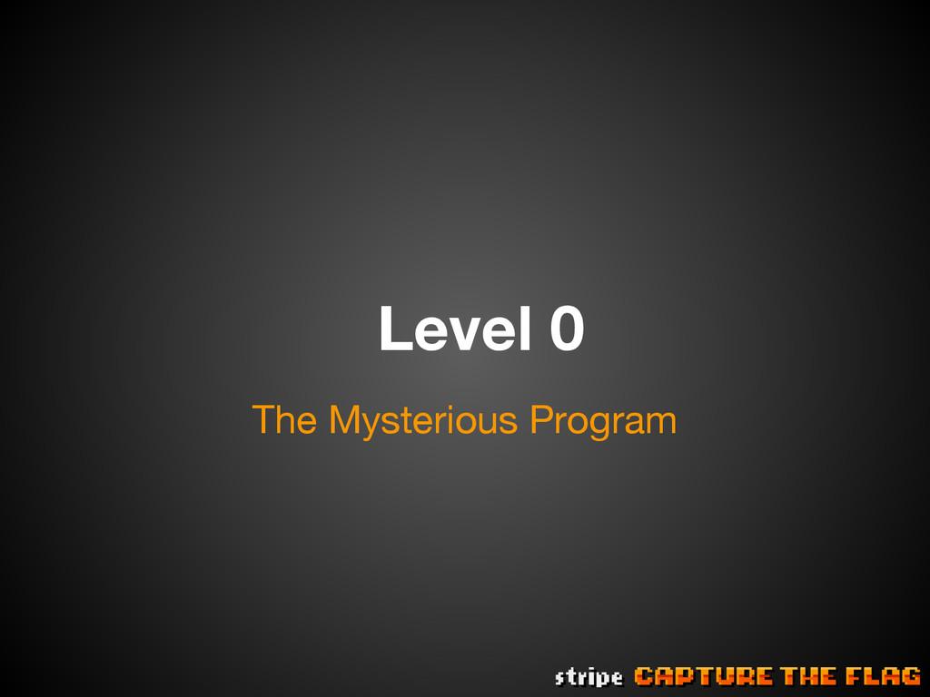Level 0 The Mysterious Program