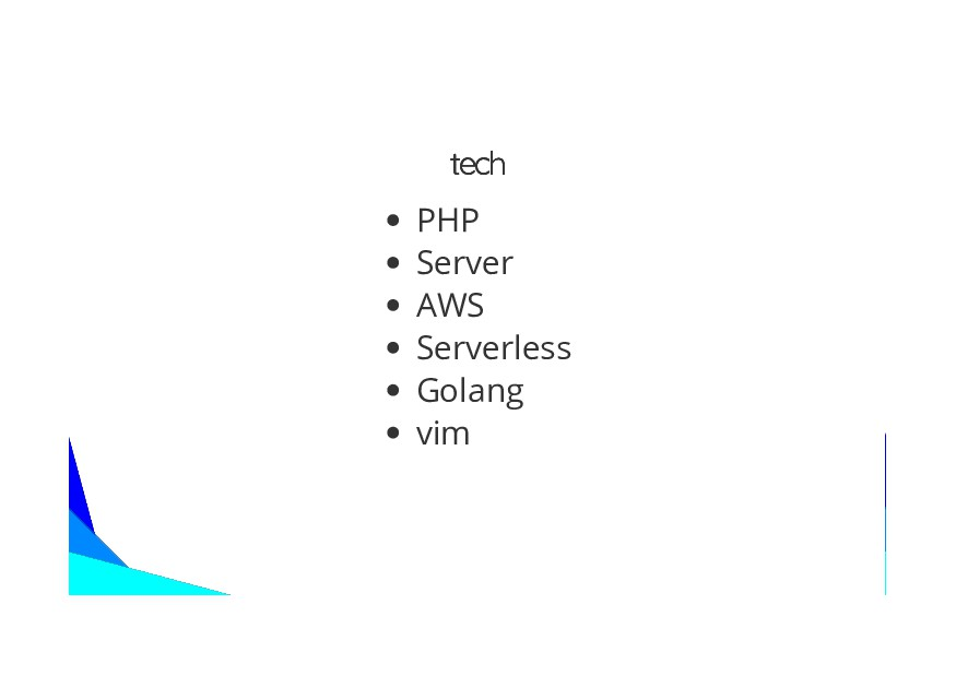 tech tech PHP Server AWS Serverless Golang vim