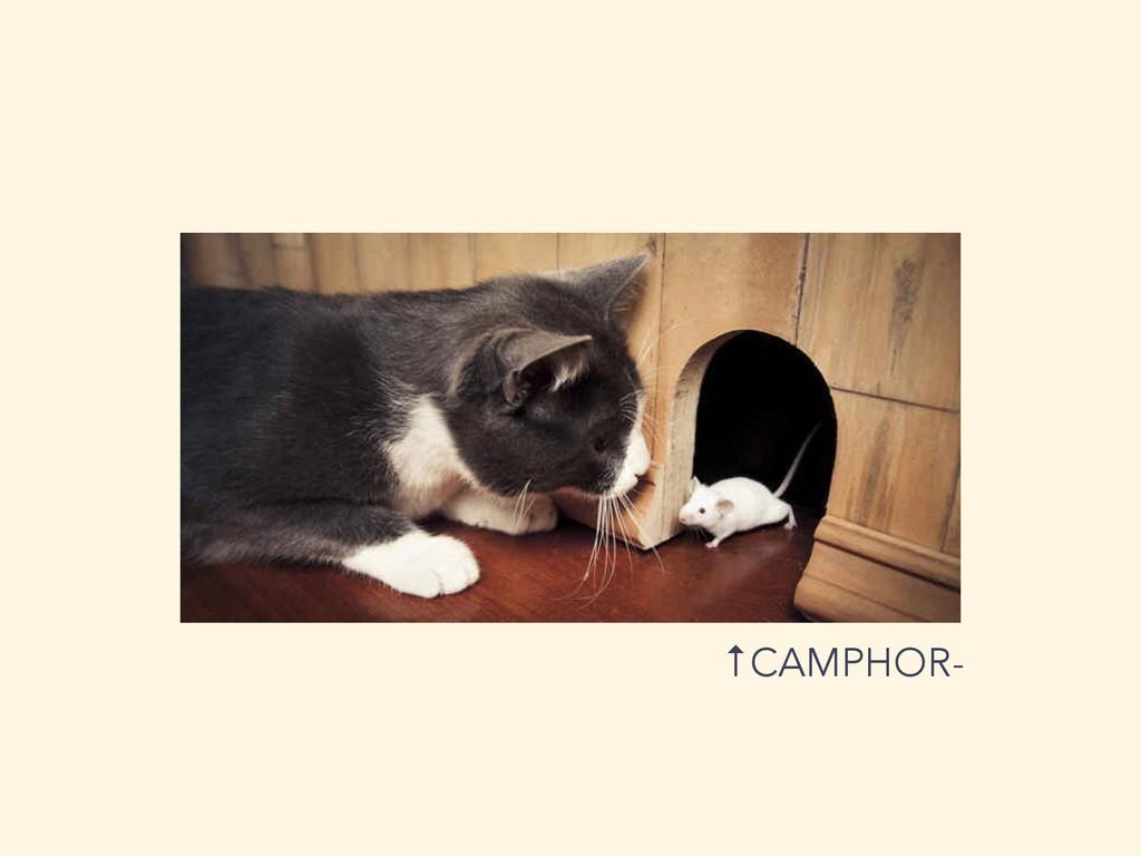 ↑CAMPHOR-