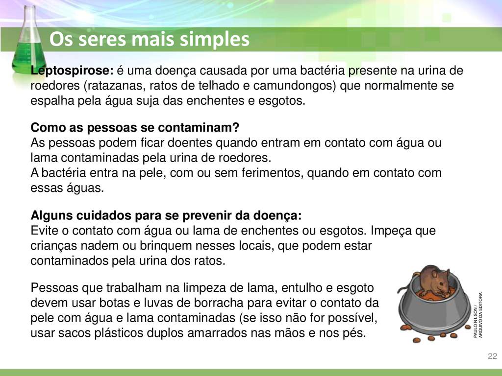 Os seres mais simples Leptospirose: é uma doenç...