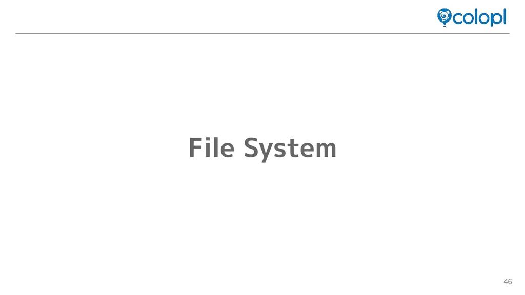46 File System