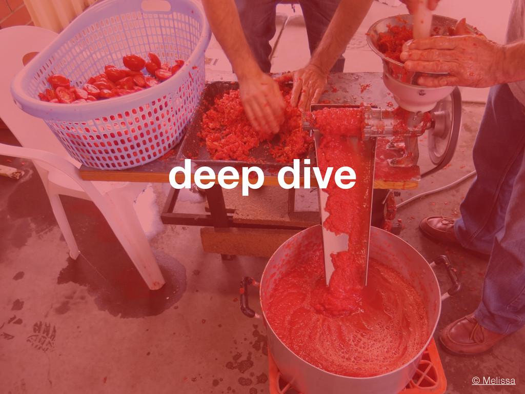 deep dive © Melissa