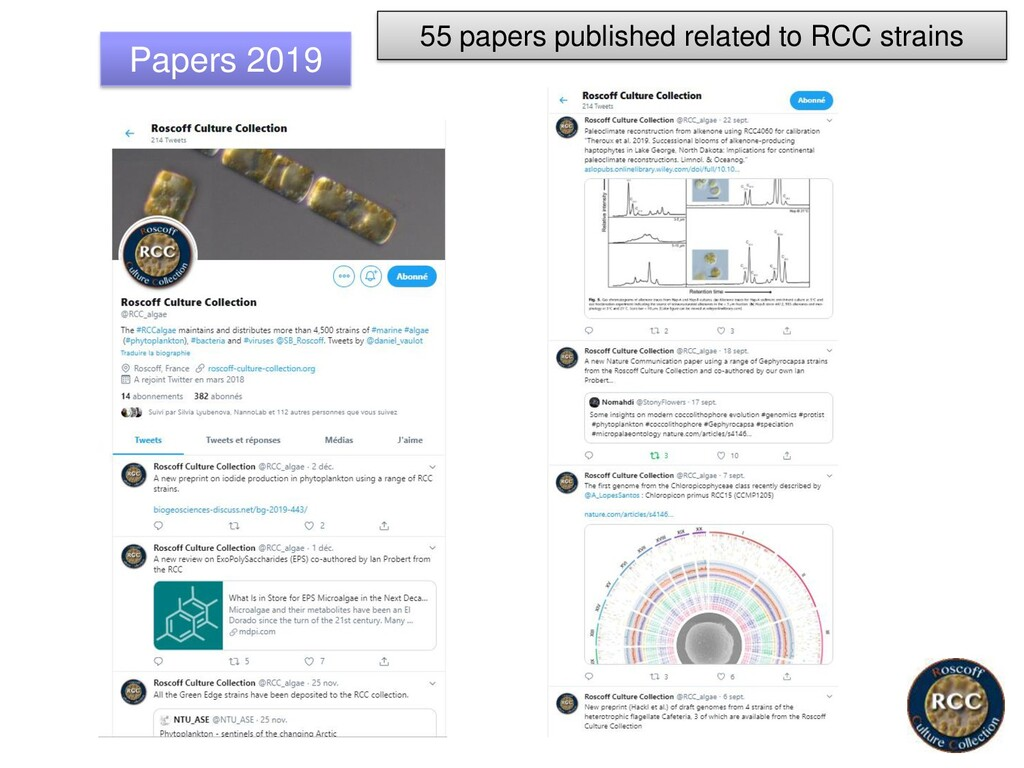 Papers 2019 55 papers published related to RCC ...