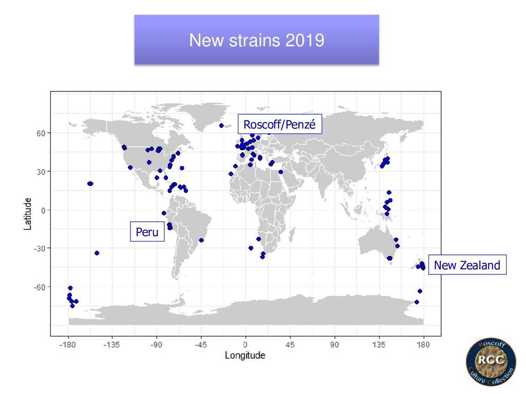 New strains 2019 New Zealand Roscoff/Penzé Peru