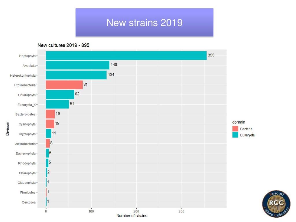 New strains 2019