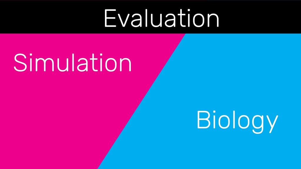 Simulation Biology Evaluation