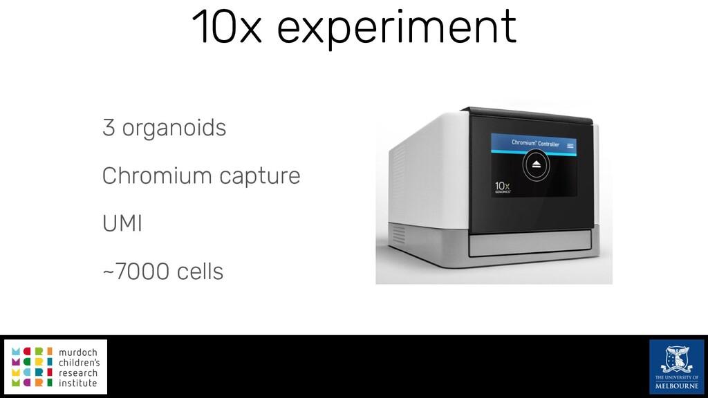 10x experiment 3 organoids Chromium capture UMI...