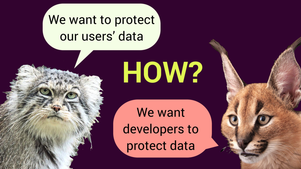 We want to protect our users' data HOW? We want...