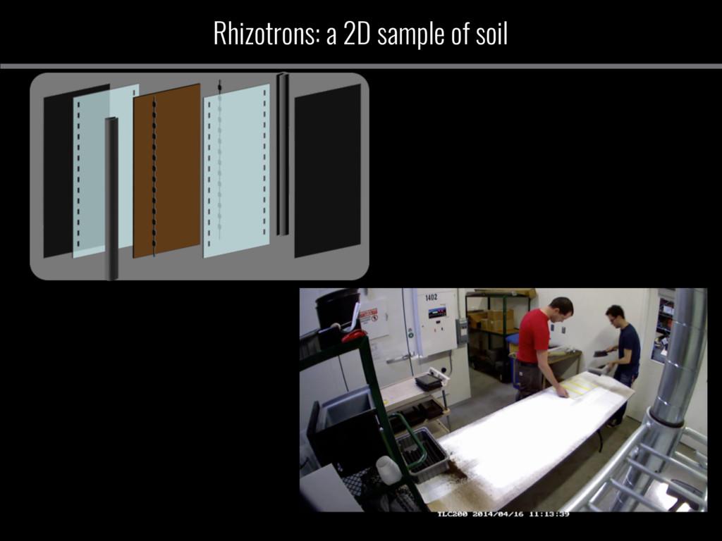 Rhizotrons: a 2D sample of soil