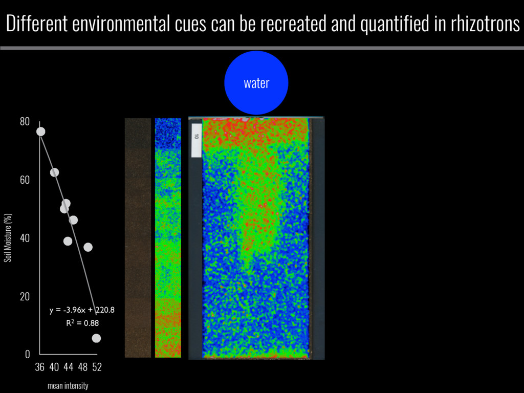 Different environmental cues can be recreated a...