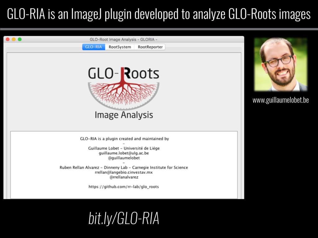 GLO-RIA is an ImageJ plugin developed to analyz...