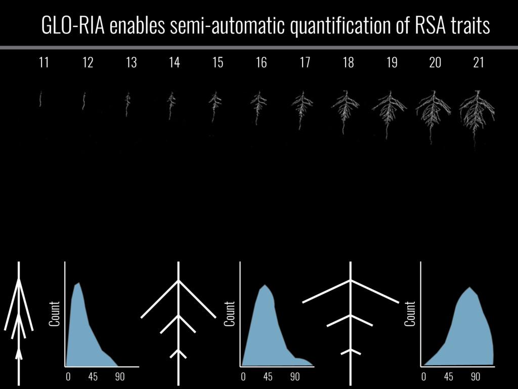 GLO-RIA enables semi-automatic quantification o...