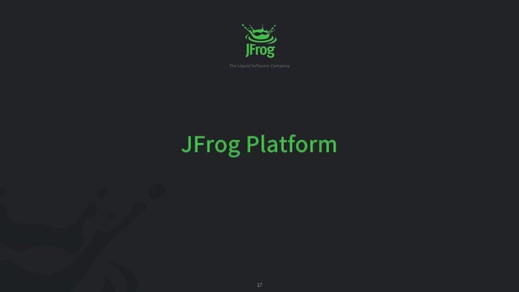 17 JFrog Platform