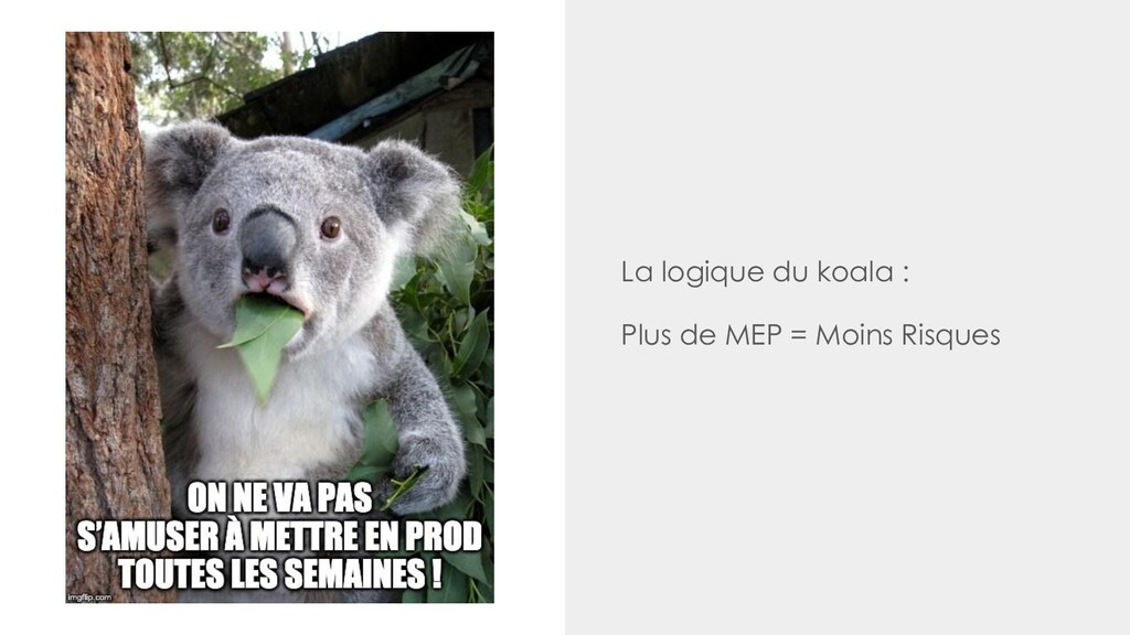 La logique du koala : Plus de MEP = Moins Risqu...