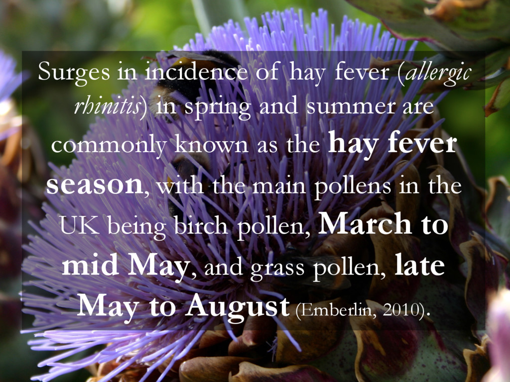 Surges in incidence of hay fever (allergic rhin...