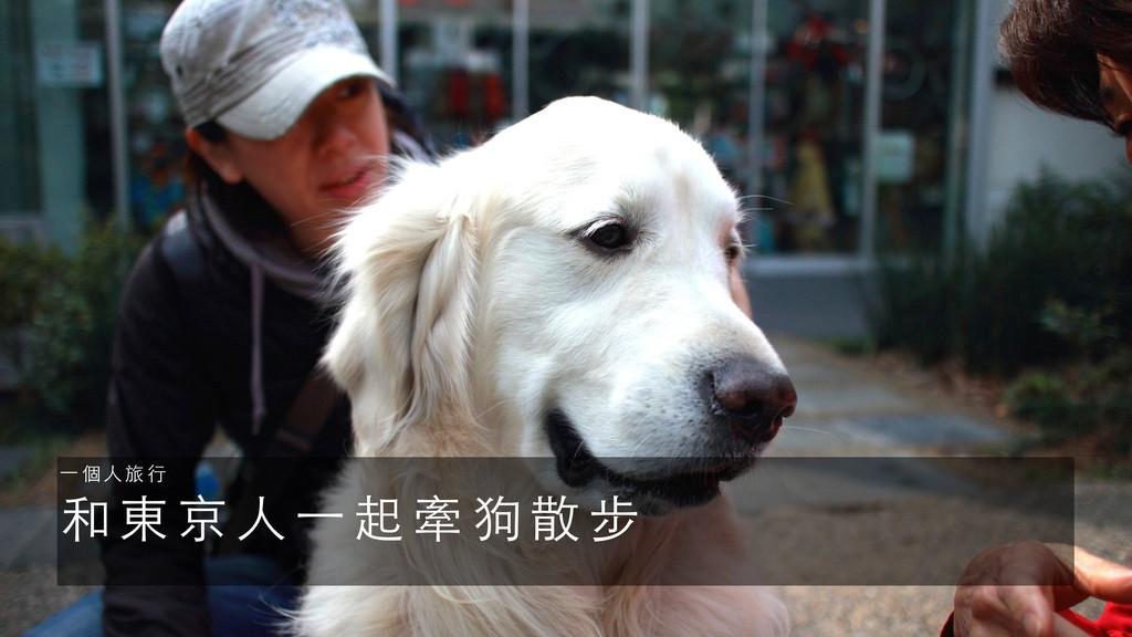 和 東 京 ⼈人 ⼀一 起 牽 狗 散 步 ⼀一 個 ⼈人 旅 ⾏行