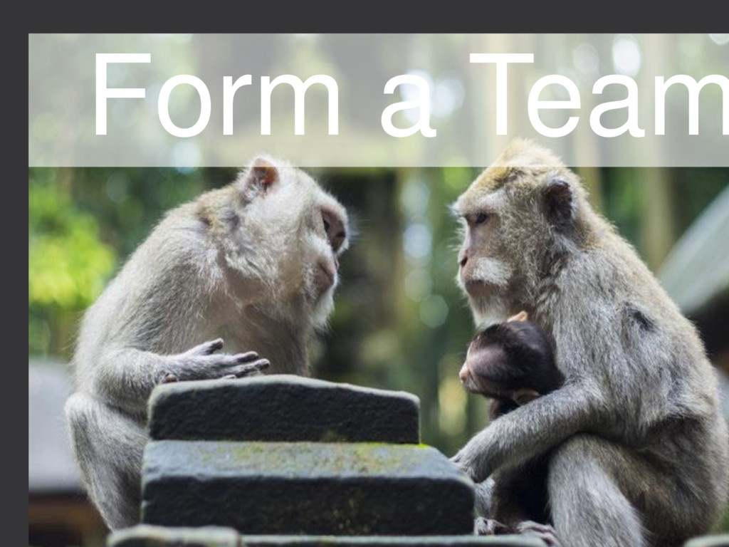 8 STARTUP X 8 Form a Team