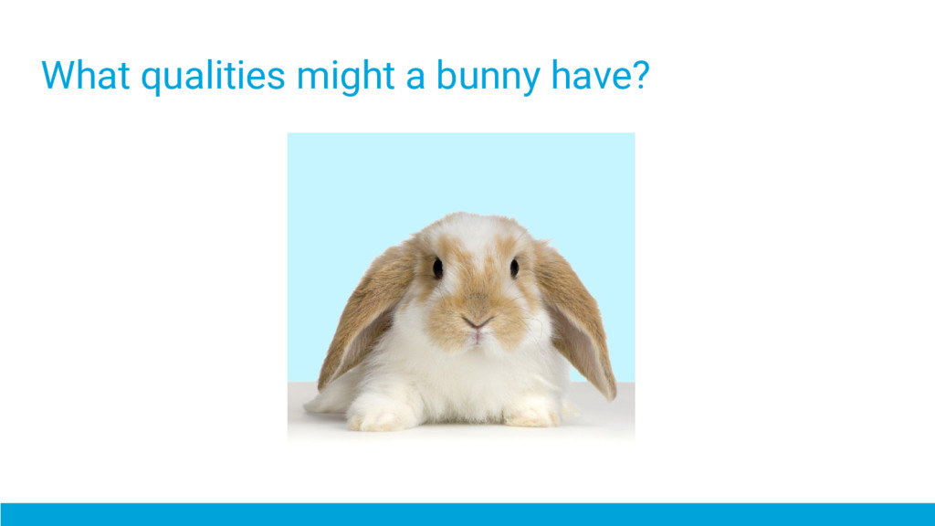 What qualities might a bunny have?