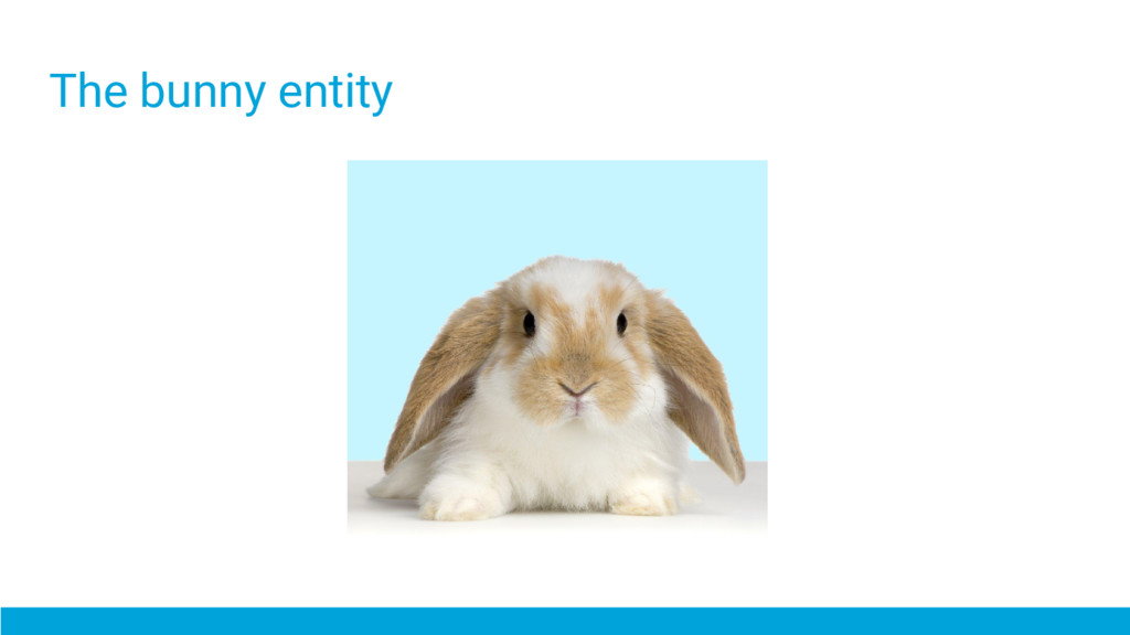 The bunny entity