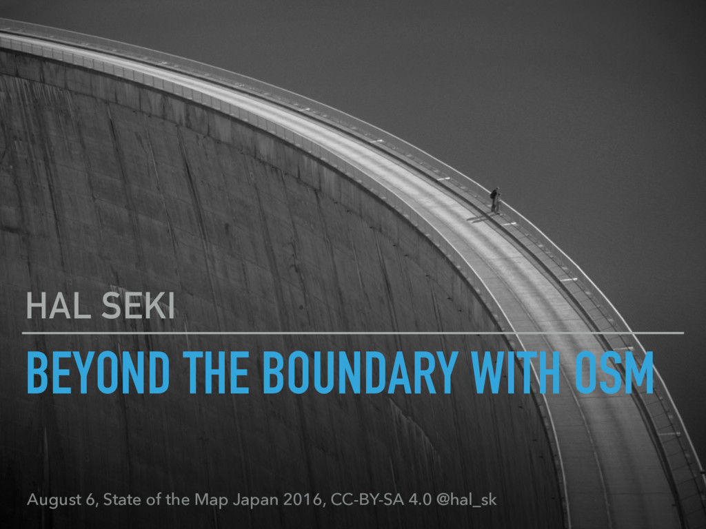 BEYOND THE BOUNDARY WITH OSM HAL SEKI August 6,...