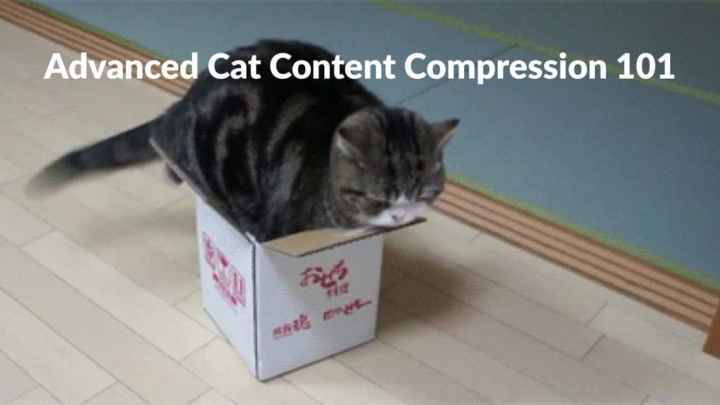 Advanced(Cat(Content(Compression(101