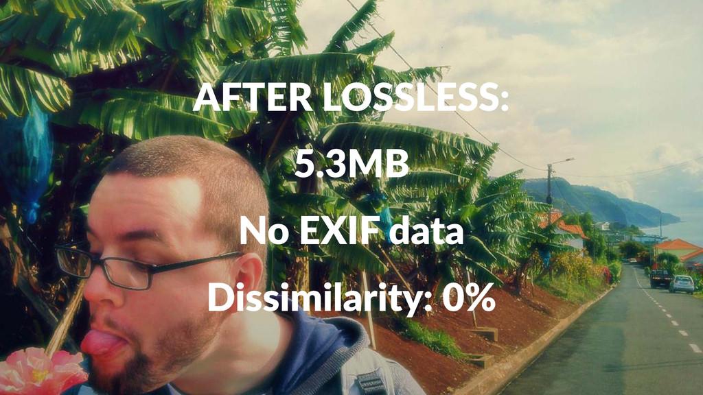 AFTER&LOSSLESS: 5.3MB No#EXIF#data Dissimilarit...